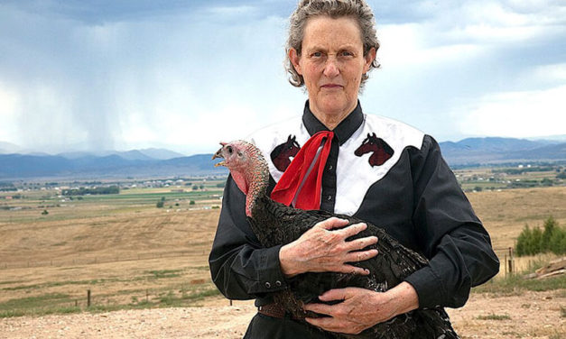 "Temple Grandin: ""I Can Picture It Perfectly""(American b. 1947)"